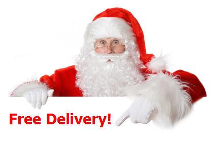 santa-free-delivery-704104