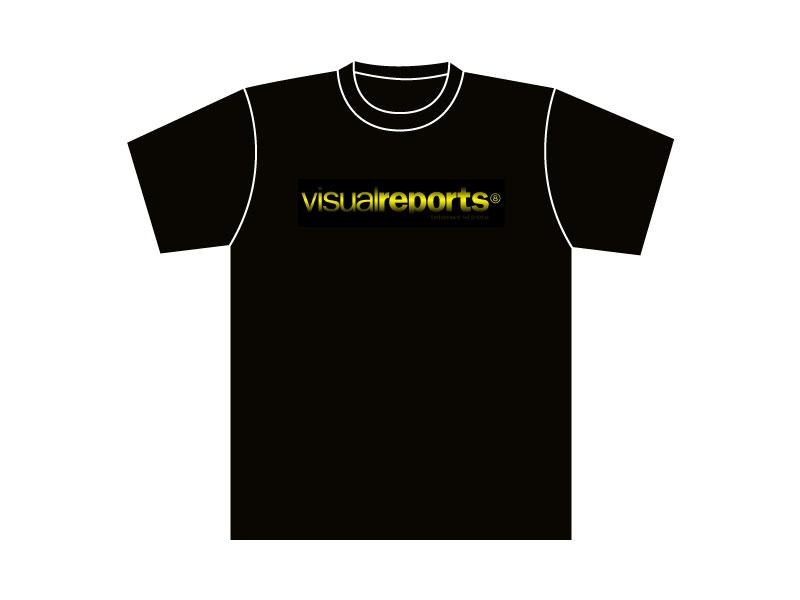Visualreports-10