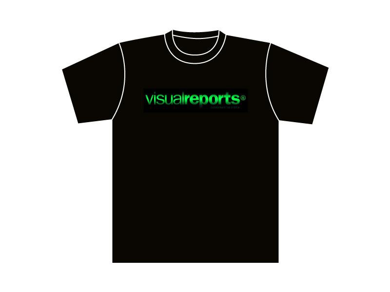 Visualreports-11