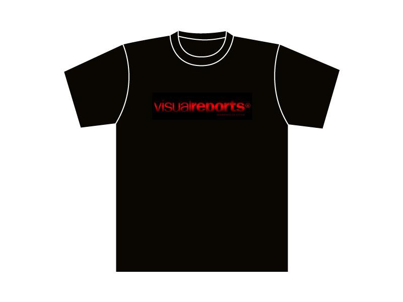 Visualreports-9