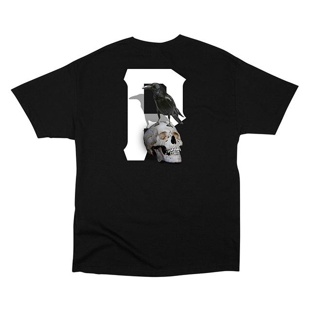RAVEN-BLACK-BACK_1024x1024