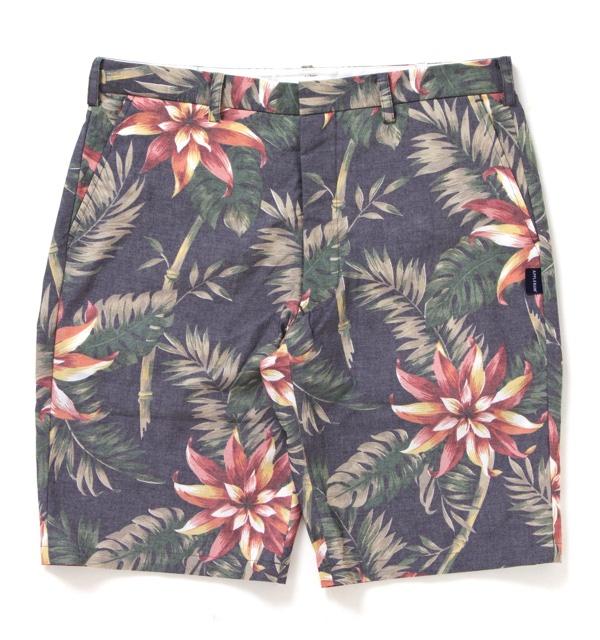 aloha_shorts1