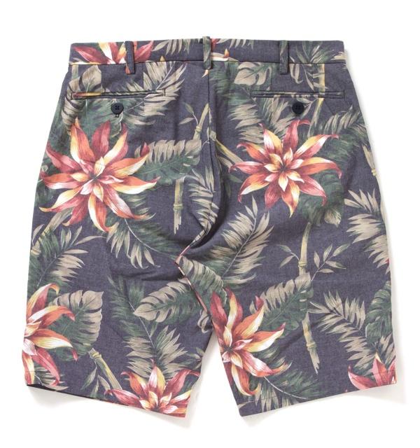 aloha_shorts2