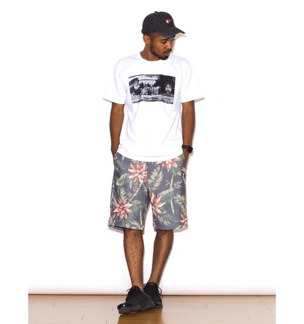 aloha_shorts6
